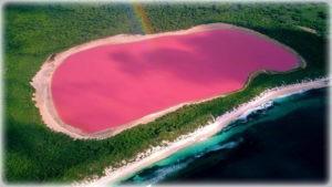 Озеро Хиллер (Австралия)