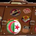 Таможенные правила Алжира