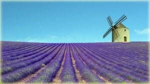 Провинция Прованс - Франция