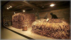 Музей табака (Museo del Tabaco)
